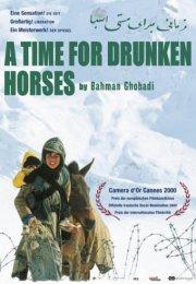 Sarhoş Atlar Zamanı